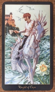 Knight of Cups - Slow Tarot
