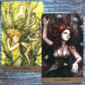 Five of Wands and Six of Wands - Tarot of the Hidden Realm