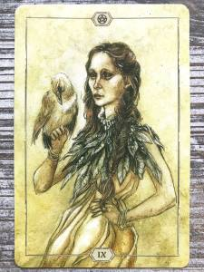 Nine of Pentacles - Hush Tarot