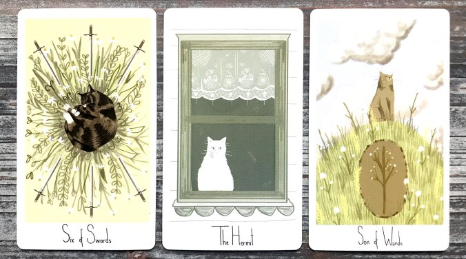 Considerate Cat Tarot