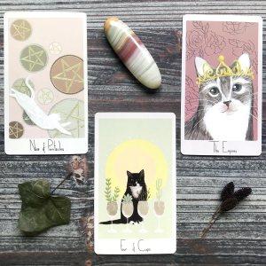 Considerate Cat Tarot