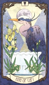 Forager's Daughter Tarot - King of Cups