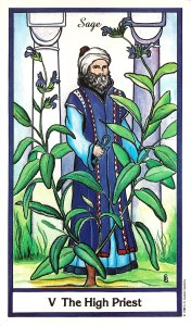 Herbal Tarot - Sage - The High Priest - Hierophant