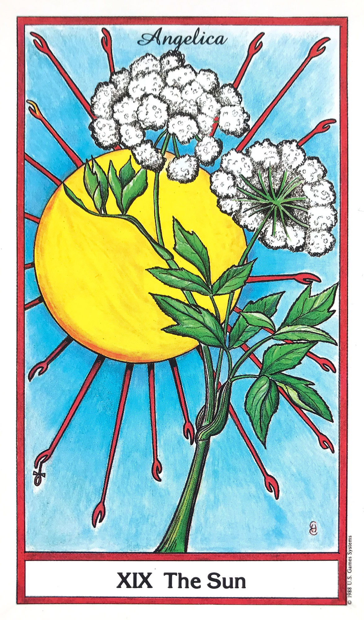 Herbal Tarot - The Sun - Angelica