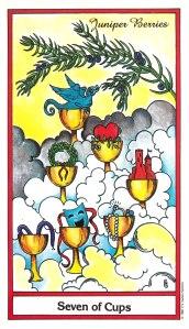 Herbal Tarot - Seven of Cups - Juniper Berries