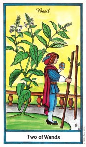 Herbal Tarot - Two of Wands - Basil