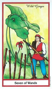 Herbal Tarot - Seven of Wands - Wild Ginger