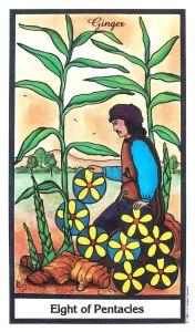 Herbal Tarot - Eight of Pentacles - Ginger