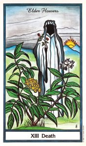 Herbal Tarot - Death - Elder Flower