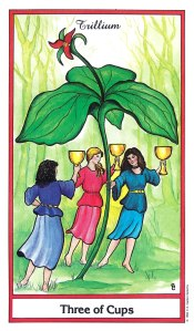 Herbal Tarot - Three of Cups - Trillium