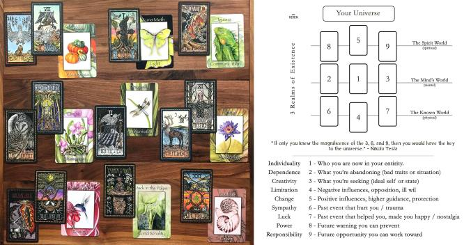 Brady Tarot and Nature's Wisdom Oracle