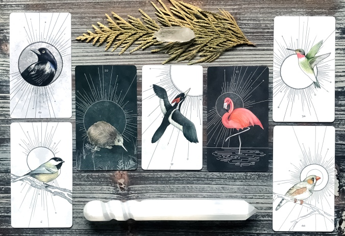Birds Oracle Deck