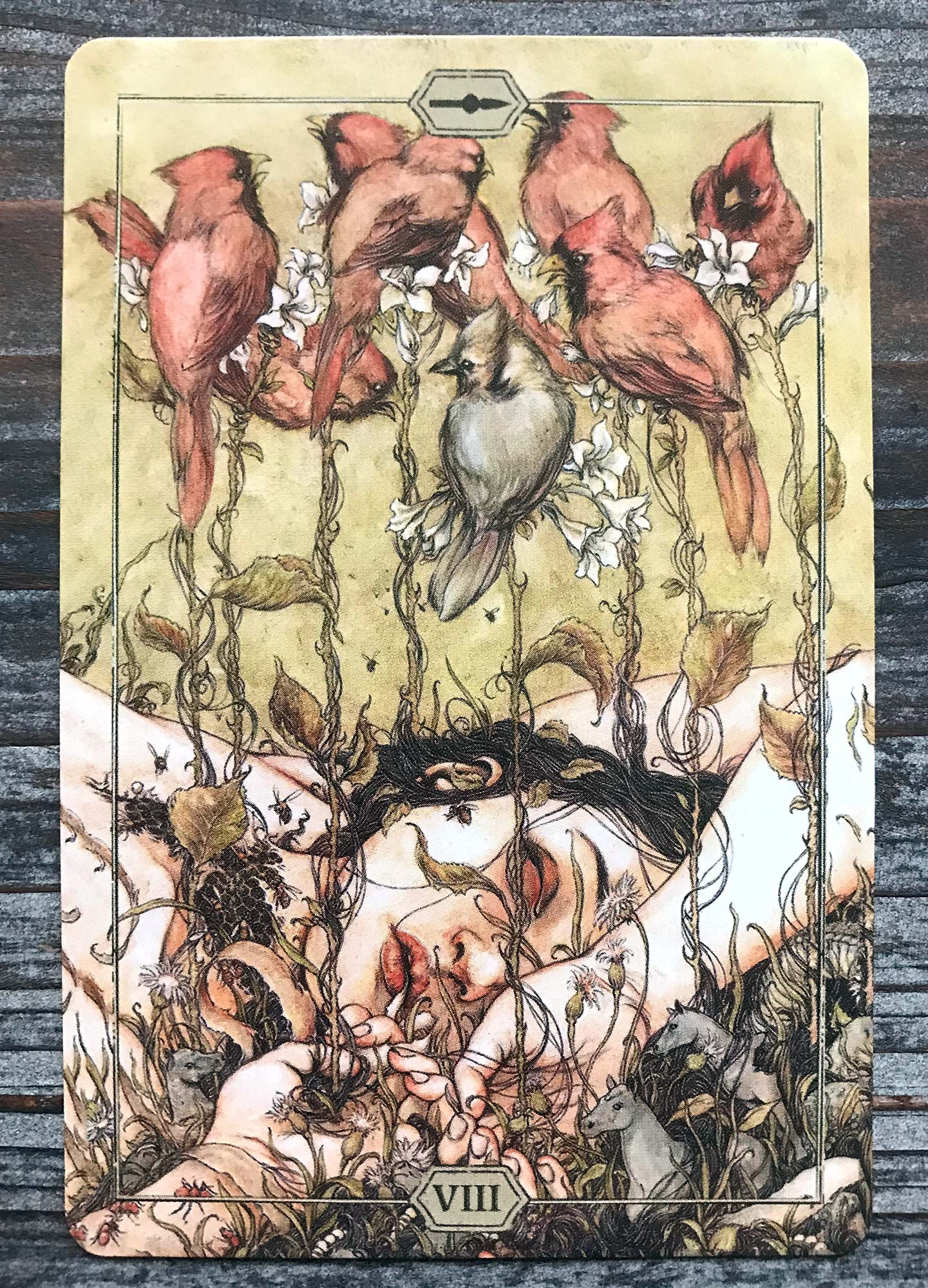 Hush Tarot - Eight of Wands