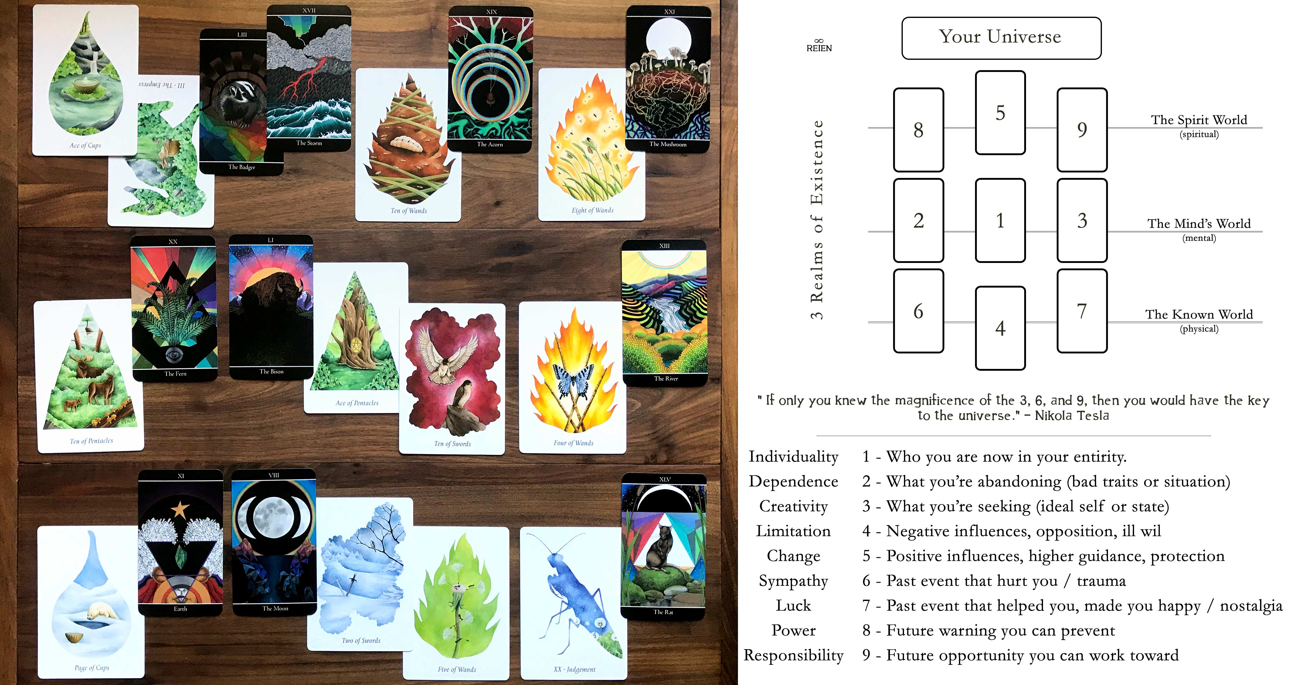 Tarot Leaves and Forces Flora + Fauna Oracle