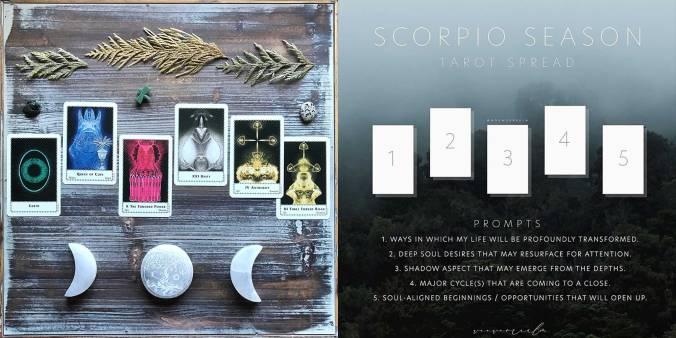 Scorpio Season Spread - Terrestrial Tarot