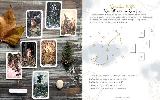 New Moon In Scorpio Tarot Reading - Oak Ash & Thorn Tarot
