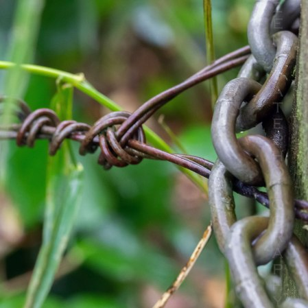 Fence Chains and Wire