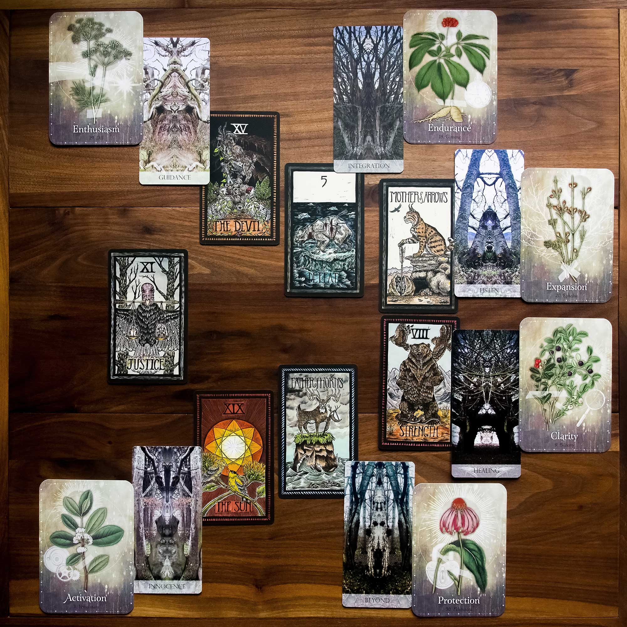 Six Month Ahead Spread - Brady Tarot, Tree Whisper Oracle, Magickal Herb Oracle