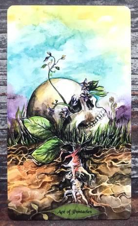 Bonestone & EarthFlesh Tarot - Ace of Pentacles