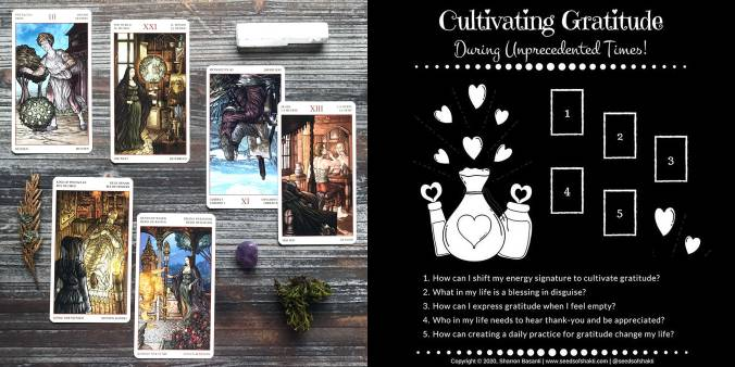 Cultivating Gratitude Tarot Reading - Tarot de Mona Lisa