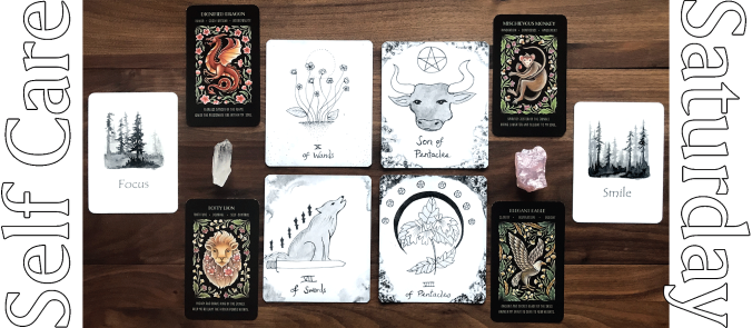 Living Tarot, Wisdom of the Forest Oracle, Wild Whiskers Spirit Animal Oracle