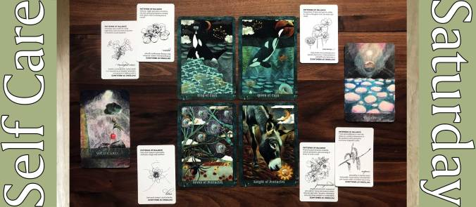Guardian of the Night Tarot, Faceted Garden Oracle, Flower Essences Deck 1 & 2