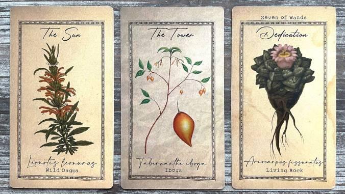 Alchemist's Garden Tarot
