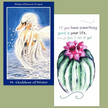 Shapeshifter Tarot and Flower Fortune Cards