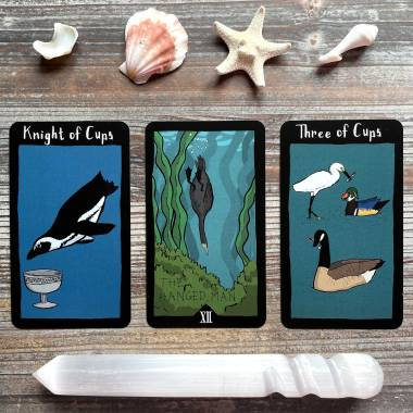 Conference of the Birds Tarot