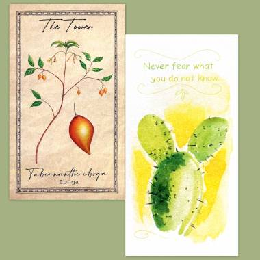 The Alchemist's Garden Tarot and Flower Fortune Cards