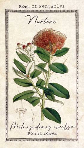 The Alchemist's Garden Tarot - Root of Pentacles - Metrosideros excelsa (aka. Pohutukawa) - Nurture