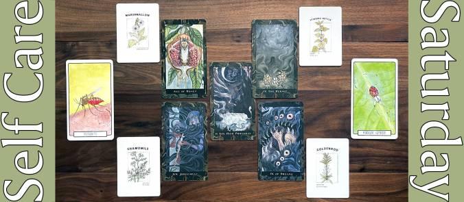Blood Moon Tarot, Materia Medica Oracle, Small Spirits Oracle Deck