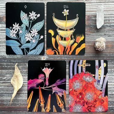 Botanica Tarot