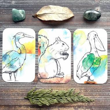 Fauna Inspiration Cards