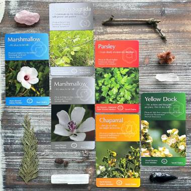Whispering Herbs Healing Cards