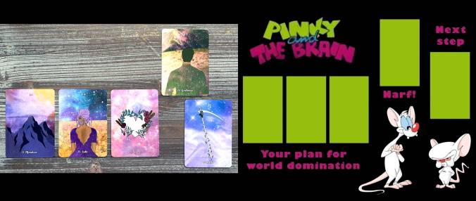 Bohemian Wild Lenormand - Pinky and The Brain Tarot Reading