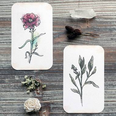 Flora Healing Oracle Cards