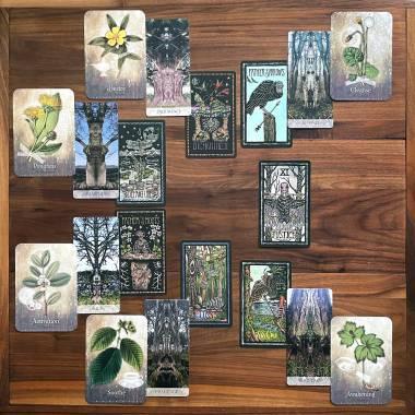 Brady Tarot, Tree Whisperer Oracle, Magickal Herbs Oracle
