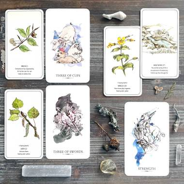 Healing Flower Color Cards and Linestrider Tarot