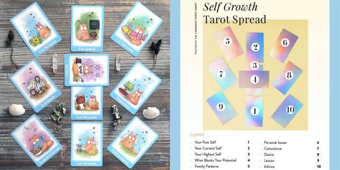 Cat-Rot Tarot - Self Growth Tarot Spread