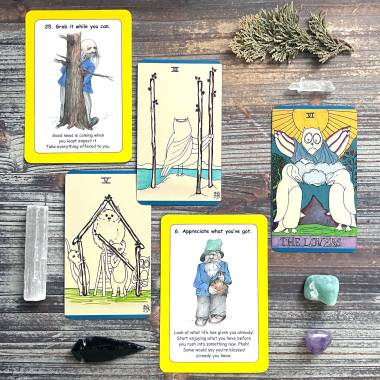 Brian's Deck and The Neurotic Owl Tarot