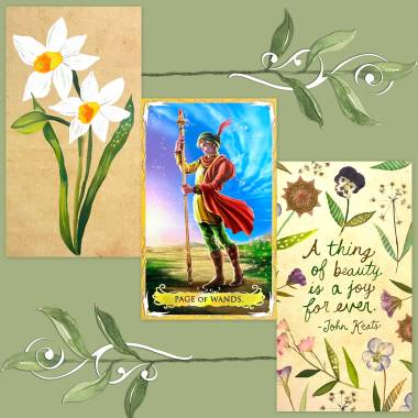 Alchemia Tarot and How to Be a Wildflower Deck