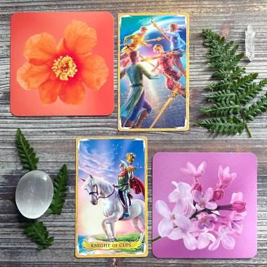 Flower Evolution Card Deck and Alchemia Tarot