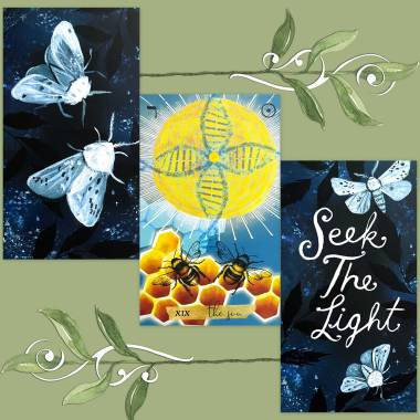 Journey of the Sacred Bee Tarot and How to be a Wildflower Deck